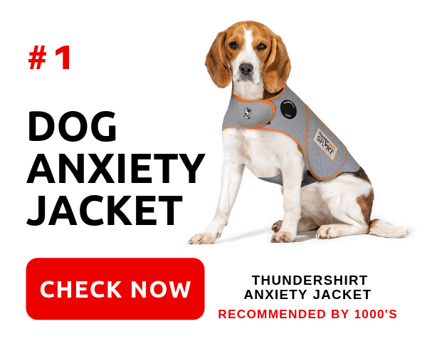 Anxiety In Dogs CTA Advert - ThunderShirt Anxiety Jacket