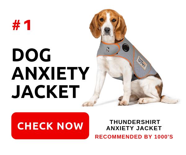Anxiety In Dogs CTA Advert - ThunderShirt Anxiety Jacket