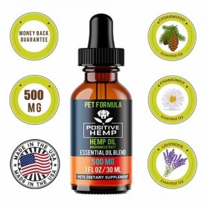 Best Anxiety Supplements For Dogs - Positive Hemp Oil
