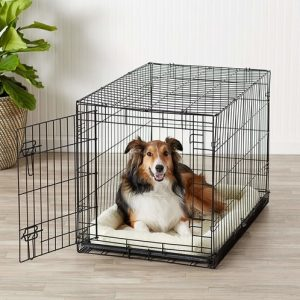Dealing With Dog Confinement Anxiety - Folding Metal Dog Crate