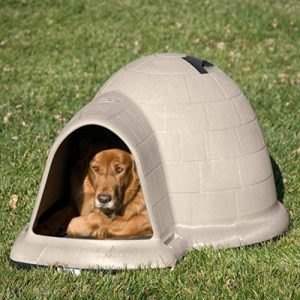Best Products For Dogs With Anxiety - Igloo Dog House