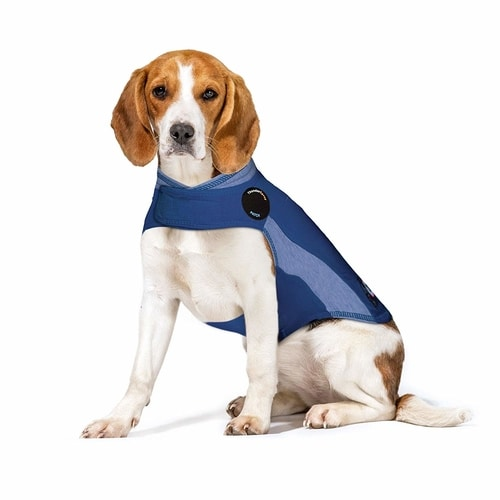 Best Products For Dogs With Anxiety - ThunderShirt Dog Anxiety Jacket