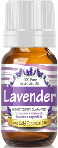 Home Remedies For Dog Anxiety That Work - Lavender Oil