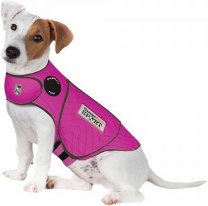 Why Is My Dog Scared Of Loud Noises - ThunderShirt Jacket