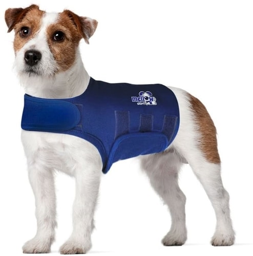 Best Dog Anxiety Vest Reviews - Mellow Shirt Dog Anxiety Calming Wrap