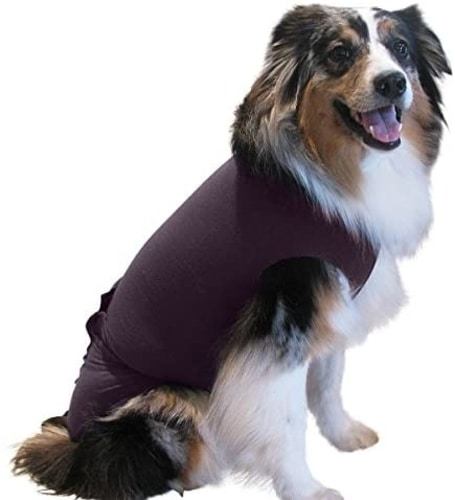 Best Dog Anxiety Vest Reviews - Surgi Snuggly Dog Cone